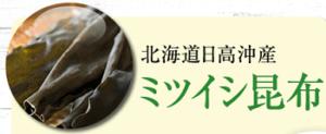 マイナチュレ育毛剤2.3