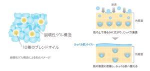 ライゼエッセンスセラム乳液11
